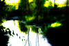 El Río (seguicollar) Tags: imagencreativa photomanipulación art arte artecreativo artedigital virginiaseguí agua río verde reflejos reflexiones árboles vegetación orillas ribera