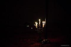 Vallee du Draa © Sophie Bigo - SBGD 2018-22 (SBGD_SophieBigo) Tags: photography artdirector freelance sophiebigo maroc trip travelphotography traveler trek morocco light