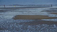 Marée basse sur la côte Normande 12 (letexierpatrick) Tags: maréebase marine marée mer maritime plage sable sea océan eau normandie france europe extérieur explore nature nikon nikond7000