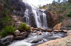 Mackenzie Falls - Grampians Victoria (Nickolas Papadopoulos) Tags: mackenzie falls grampians victoria waterfall blur motion landscape sony a7rii fe 1635mm f4