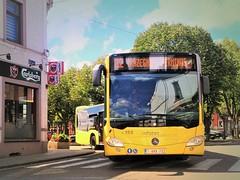 Tec Hainaut (Tram & Bus de Belgique) Tags: belgique tec hainaut bus chapellelezherlaimont