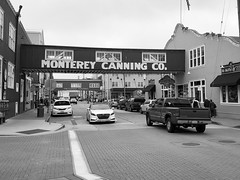 The Street (World-viewer) Tags: downtown architecture pavement artistic ngc travel monochrome blackandwhite bw streetphotography street monterey california unitedstates us