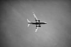 And the Stars Can't Be Found (Thomas Hawk) Tags: america arizona phoenix southwestairlines usa unitedstates unitedstatesofamerica airplane bw jet fav10 fav25 fav50