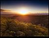 180204-0078-MAVICP.JPG (hopeless128) Tags: australia trees sydney sunrise 2018 bluemountains glenbrook newsouthwales au