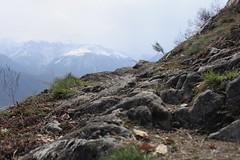 sentier (bulbocode909) Tags: valais suisse montagnes nature printemps sentiers vert