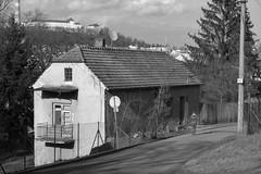 Brno (Kojotisko) Tags: brno streetphoto bw