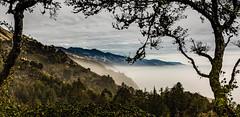 5975  Floating on a Sea of Mist (foxxyg2) Tags: landscape sky mist clouds bigsur nepenthe california