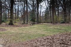 Enchanted Forest 2 NBG (Puddin Tain) Tags: forest norfolkbotanicalgarden norfolkvirginia enchantedforest