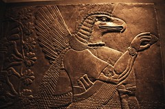 Relief panel, Neo-Assyrian (kristapsgd) Tags: 2017 nikon f100 fujichrome provia slide film 400x art nyc metropolitan museum mesopotamia neoassyrian pushed