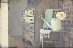 Getting garden ready (Photography by Julia Martin) Tags: photographybyjuliamartin vintage 1252 oldchair wateringcan sunglasses scarf shawl oldpinebureau inmyhall oldbrickwall vintagestyleedit spring 2018 textures frenchkiss creativeedit gettinggardenready