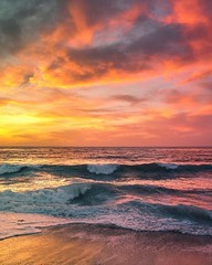 By drxgonfly See more pictures at : https://buff.ly/2G8Xouc (juliafinance1) Tags: nature photos picture wildlife waterfall best mother sunset water beach sky flower tree dogs cloud landscape sea summer birds river garden