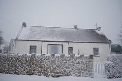 DSC_8010 (seustace2003) Tags: baile átha cliath ireland irlanda ierland irlande dublino dublin éire glencullen gleann cuilinn st patricks day zima winter sneachta sneg snijeg neve neige inverno hiver geimhreadh