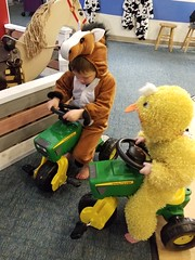 Brothers on tractors (quinn.anya) Tags: sam paul toddler preschooler tractor horse duck costume habitot brothers
