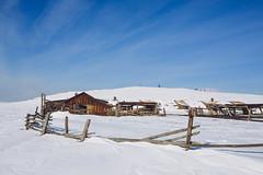Abandoned barn - Lake Baikal - Olkhon island (dataichi) Tags: ольхон 貝加爾湖 байкал 바이칼호 russia travel tourism destination siberia winter nature landscape snow baikal ruin barn house wood wooden remote rustic