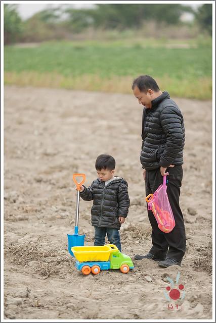 火龍果園星光野餐之找地瓜 烤地瓜 吃地瓜 (4)
