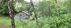 Hhao lac 7