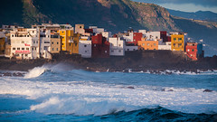 Living on the edge (milo42) Tags: httpwwwloveoflandscapecom httpwwwchrisnewhamphotographycouk canary islands tenerife outside winter 2018 canaryislands puertodelacruz canarias spain es
