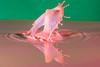 Water Splash (LKB_Photography) Tags: watersplash canon splash art abstract splashart