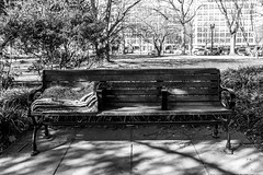 Bench Bed (Phil Roeder) Tags: washingtondc leica leicax2 bench park homeless blanket blackandwhite monochrome