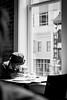 Soak it in (1eyephotography) Tags: street public reading blackandwhite lunch urbansetting city washingtondc solo alone window sun light people curious knowledge age senior wise tony