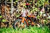 Eggleston (Thomas Hawk) Tags: america glendale oregon southernoregon usa unitedstates unitedstatesofamerica tricycle us fav10