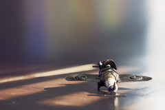 sparky takes flight (rockinmonique) Tags: 52in52 201852weekthemechallenge shiny plane toy light shadow bokeh sparkplug moniquew canon canont6s tamron tamron45mm copyright2018moniquewphotography