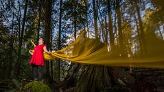 Cascade Falls Park 2 (rahmanjoy) Tags: nikond7100 nikon tokina britishcolumbia cascadefalls dramaticportrait portrait strobe nature