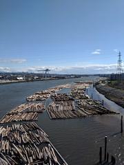 Fraser River Log Boom (jmaxtours) Tags: logs logboom fraserriver industry loggingindustry logging vancouver vancouverbc vancouverbritishcolumbia britishcolumbia bc