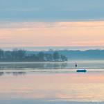 Silent Morning - Matin silencieux thumbnail