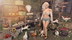 Country Living (Duchess Flux) Tags: collabor88 theseasonsstory thechapterfour blueberry addams exile purepoison skinnery catwa warpaint stardust infiniti jian zerkalo drd lode secondlife sl