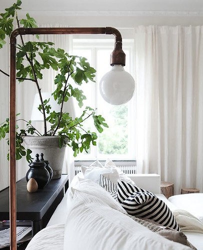 Furniture  - Bedrooms : cozy. green plants make every space beautiful.
