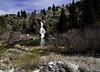 Bike Trail (Super Uncle Extraordinaire) Tags: verdi nv hiking waterfall trail