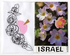 img981 (condor avenue) Tags: friendshipzines pals collage mixedmedia pressedflowers affirmations lace doily olympia washington