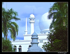 al azhar mosque (harrypwt) Tags: harrypwt canons95 s95 mosque mesjid jakarta indonesia trees palm framed southjakarta