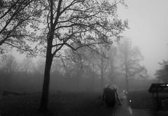 Giant (Vaidas Sirtautas) Tags: model blackandwhite creepy dark trees giant mist grass tree