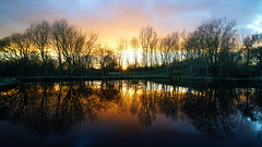 Sunset at Sammy's Basin (Mark BJ) Tags: daisynook countrypark failsworth manchester uk oldham basin sunset sammysbasin hollinwoodcanal reflection cloud fence beautiful peaceful relaxing woodland