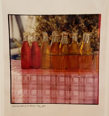 Robert Rauschenberg - photos from China (battyward) Tags: art modern sfmoma museum rauschenberg popbottle bottle glassbottle photo photography pink china sf sanfrancisco