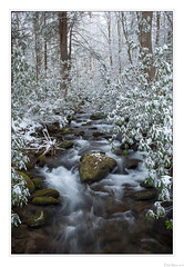 Winter's Paradise (John Cothron) Tags: 5dmarkii 5d2 5dii 5dmkii americansouth bearwallowbranch cpl canon canoneos5dmkii cothronphotography distagon352ze dixie eastsouthcentralstates elkmont gatlingburg greatsmokymountainnationalpark johncothron seviercounty southernregion tennessee thesouth us usa unitedstatesofamerica volunteerstate zeissdistagont352ze afternoonlight circularpolarizingfilter cold creek flowing freshwater landscape loggingtown longexposure moss nature outdoor outside resorttown river rock scenic snow stream water winter img10226130302 ©johncothron2013 wintersparadise distagont235