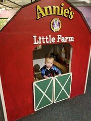 Paul on the farm (quinn.anya) Tags: paul toddler farm habitot serious
