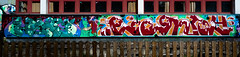 HH-Graffiti 3619 (cmdpirx) Tags: hamburg germany graffiti spray can street art hiphop reclaim your city aerosol paint colour mural piece throwup bombing painting fatcap style character chari farbe spraydose crew kru artist outline wallporn train benching panel wholecar