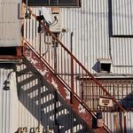 Stairs and Shadows thumbnail