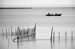 ... La barca de Tonet  ... (Device66.) Tags: albufera valencia wetland device monochrome elsaler pinedo yeahh sin nubes