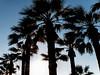 Creta 2017-19.jpg (vomar76) Tags: 2017 creta giugno natura peasaggio viaggio