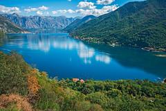 Blue Bay (fotofrysk) Tags: bayofkotor blue bay fjord water istriamontenegroroadtrip montenegro adriaticcoast dalmatiancoast sigmaex1020mmf456dch nikond7100 201710099360