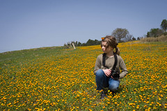 Calendula Field (Angelo Petrozza) Tags: calenula field campo arancione orange pentax pentaxk70 pentaxiani fiori flowers landscape panorama pentaxk20d angelopetrozza portrait ritratto 35mm limited