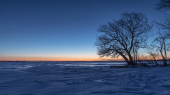 Sibbald Point Park Ontario (twohamstersca) Tags: ontario park sunrise blue hours trees ice lake orange glow canon 5d
