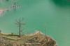 _29A1225.0218.Pải Lủng.Mèo Vạc.Hà Giang (hoanglongphoto) Tags: asia asian vietnam northvietnam northeastvietnam landscape scenery vietnamlandscape vietnamscenery vietnamscene nature natureinvietnam hagianglandscape hdr river nhoqueriver water watersurface bluswater bluewatersurface brink riverside canon canoneos5dsr canonef500mmf4lisiiusm đôngbắc hàgiang mèovạc pảilủng mãpílèng sôngnhoquế nước mặtnước mặtnướcmàuxanh nướcmàuxanh bờsông tree cây