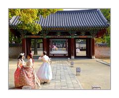 Retour vers le futur /  Corée du Sud (PtiteArvine) Tags: coréedusud hanbok couleurs temple automne jeunesfilles jeonju asie tradition