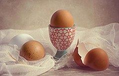 How do you like your eggs? (Through Serena's Lens) Tags: stilllife smileonsaturday eggcellent eggs speckles white brown tabletop closeup eggcup feathers texture
