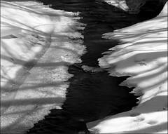 2018-03-25 Ukraine Acros in XTOL 1+2 13 min005-01web (Yuriy Sanin) Tags: yuriysanin largeformat 4x5 5x4 bwfilm film acros congo4008 snow creek river shadow юрийсанин большойформат снег река ручей русь пленка фотопленка wistasp 2018
